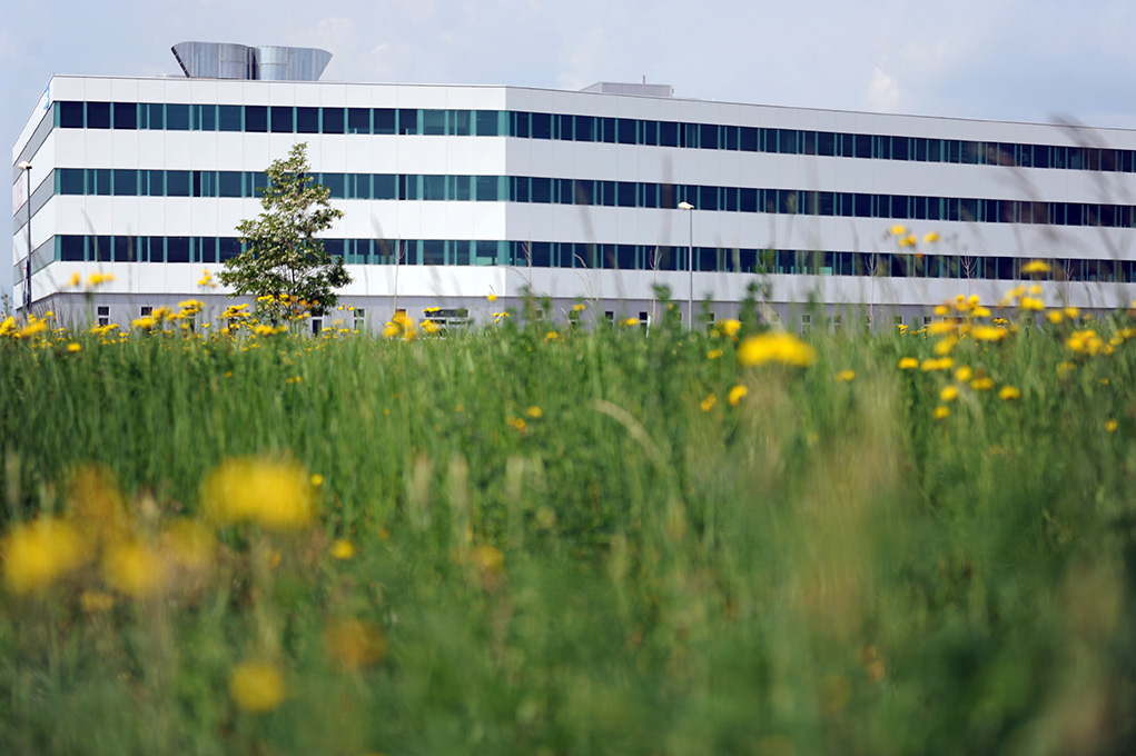 EP Solutions headquarter. Copyright Joana Abriel (2011)